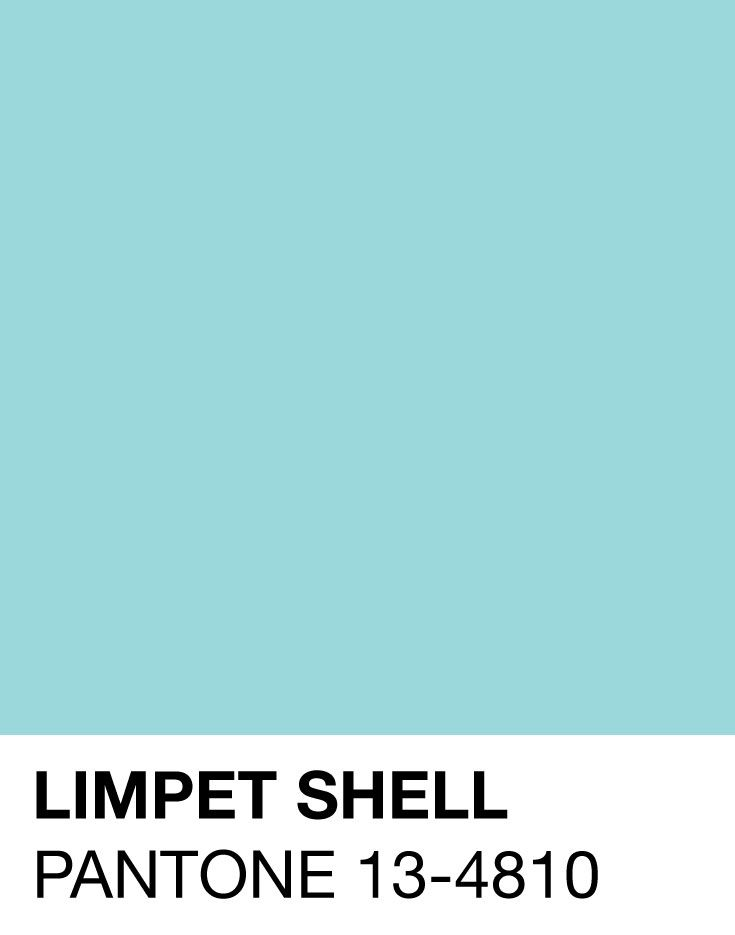Tanger Outlets_Limpet Shell